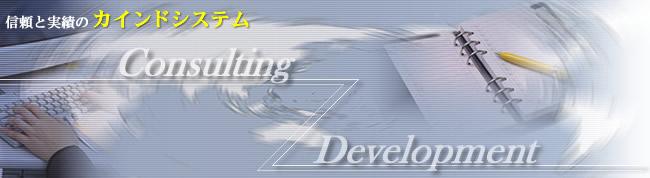 カインドシステム-Consulting,Development-